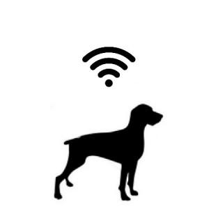 Ηλεκτρονικές Συσκευές Σκύλου