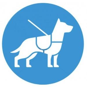 Στηθόλουρα Σκύλου