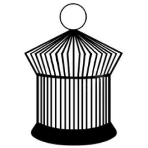 Κλουβιά Παπαγάλου - Μάινας